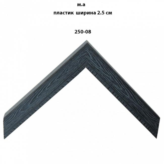 Пластиковый багет черных тонов шириной 2.5 см арт. 250-08