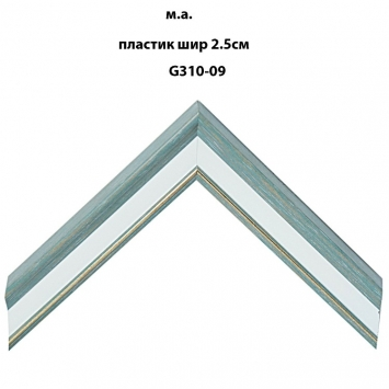 Багет пластиковый светлых тонов шириной 2.5 см арт. G310-09
